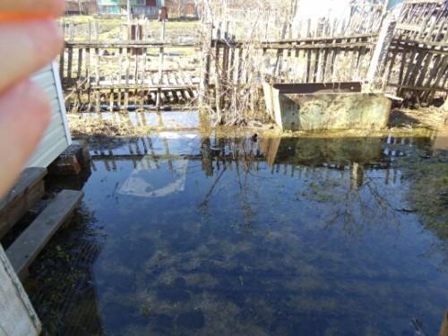 Затопление огородов при половодье 2013 года